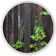 Ivy On Fence Round Beach Towel