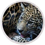 Jaguar Cub Round Beach Towel