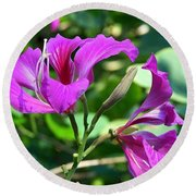 Jamaican Bloom Photograph   Round Beach Towel