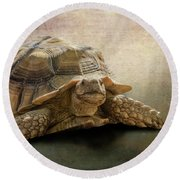Jamal The Tortoise Round Beach Towel