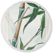 Japan: Bamboo, C1870s Round Beach Towel