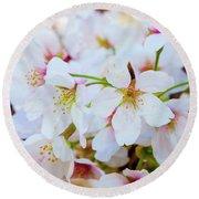 Japanese Cherry Tree Blossoms 2 Round Beach Towel