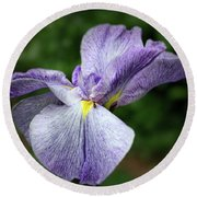 Japanese Iris Unfolding Round Beach Towel