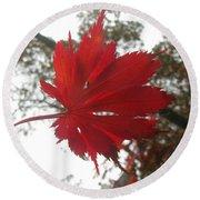 Japanese Maple Leaf 2 Round Beach Towel