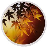 Japanese Maple Leaf Round Beach Towel