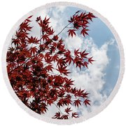 Japanese Maple Red Lace - Vertical Up Right Round Beach Towel