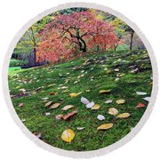 Japanese Maple Tree On A Mossy Slope Round Beach Towel