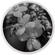 Jatropha Blossoms Wasp Painted Bw Round Beach Towel