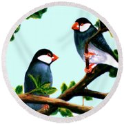 Java Sparrows  #102 Round Beach Towel