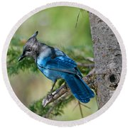 Jay Bird Round Beach Towel