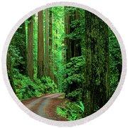 Jedediah Smith Redwoods                            Round Beach Towel