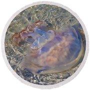 Jellyfish Round Beach Towel by Betsy Knapp