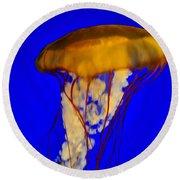 Jellyfish In Blue Waters Round Beach Towel