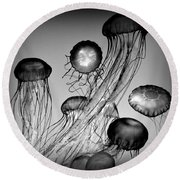 Jellyfish In Monochrome Round Beach Towel