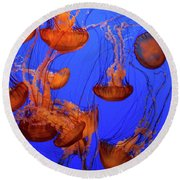 Jellyfish Party Round Beach Towel
