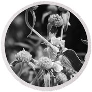 Jerusalem Sage Round Beach Towel
