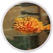 Jewel Drops - Orange Chrysanthemum Bloom Floating In A Fountain Round Beach Towel