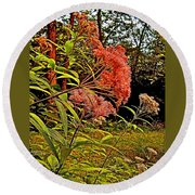 Joe-pye-weed Near Schroon River In New York Round Beach Towel