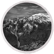 Joshua Tree At Keys View In Black And White Round Beach Towel
