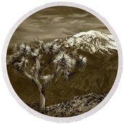 Joshua Tree At Keys View In Sepia Tone Round Beach Towel