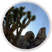 Joshua Tree California Round Beach Towel