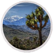 Joshua Tree In Joshua Park National Park With The Little San Bernardino Mountains In The Background Round Beach Towel
