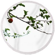 Juicy   A Tempting Photograph Of A Tasty Ripe Red Apple On A Tree  Round Beach Towel