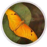 Julia Dryas Butterfly-2 Round Beach Towel
