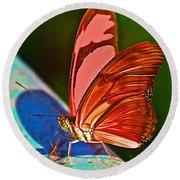 Julia Heliconian Butterfly In Iguazu Falls National Park-brazil Round Beach Towel
