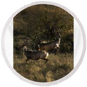 Jumping Deer Round Beach Towel