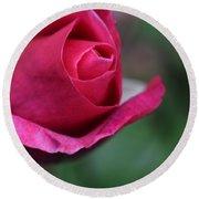 June Rose #7 Round Beach Towel