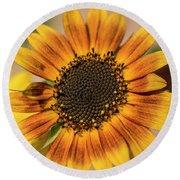 June Sunflowers #2 Round Beach Towel