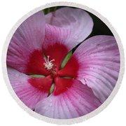 Junes Hibiscus 2 Round Beach Towel