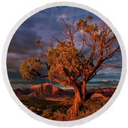 Juniper And Storm Back Of Zion National Park Utah Round Beach Towel