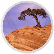 Juniper On Sandstone Round Beach Towel