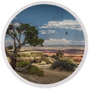 Juniper Tree On A Mesa Round Beach Towel
