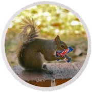 Junk Food Squirrel Round Beach Towel
