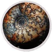 Jurassic Ammonite Round Beach Towel