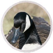 Just A Goose Round Beach Towel
