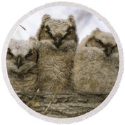 Just Babies Round Beach Towel