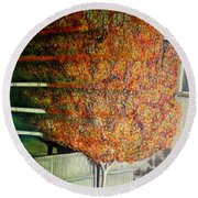 Just Before Fall Round Beach Towel