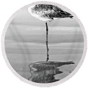 Just Being Coy - Bw Round Beach Towel