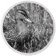 Just Ducky Bw Round Beach Towel