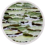 Just Lily Pads Round Beach Towel