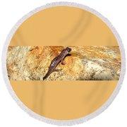 Juvenile Slimy Salamander Round Beach Towel