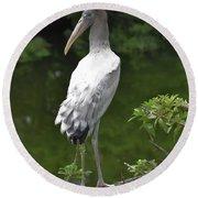 Juvenile Wood Stork Round Beach Towel