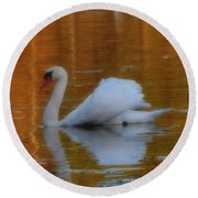 Kensingtons Swan 1  Round Beach Towel