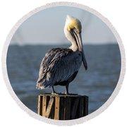 Key Largo Florida Yellow Headed Pelican Round Beach Towel