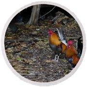 Key West Chickens Round Beach Towel