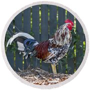 Key West Rooster 2 Round Beach Towel